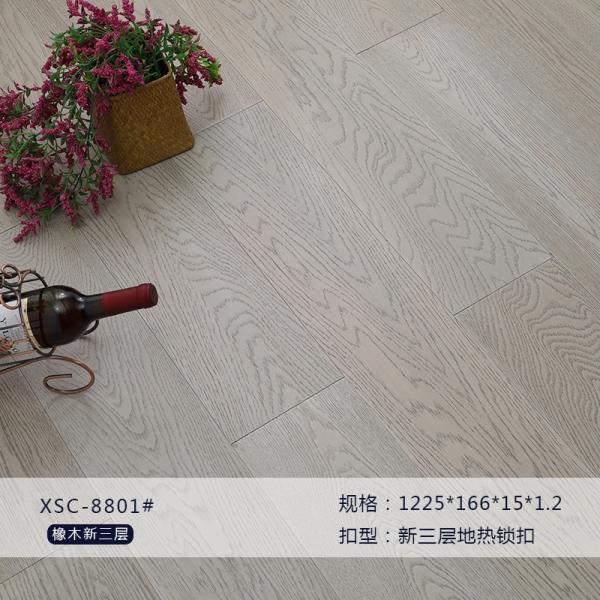 XSC8801